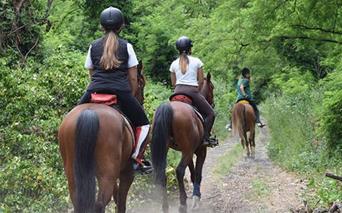 Turismo equestre, maneggi, escursioni a cavallo a Calasetta – Sud Sardegna